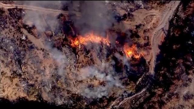 美国亚利桑那州山火肆虐 民众紧急撤离