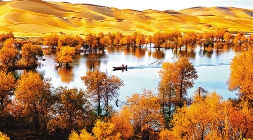 有一种美,叫新疆的美图片
