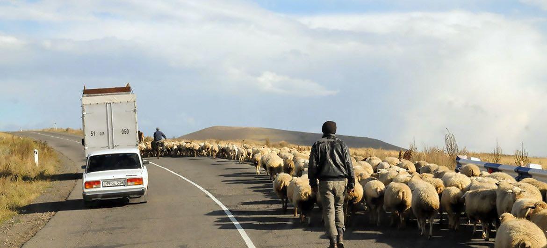 联合国秘书长对阿塞拜疆—亚美尼亚冲突表示关切