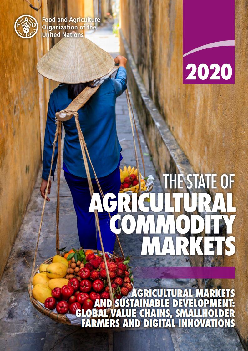 粮农组织报告:2020年粮食及农业相关可持续发展目标指标进展报告
