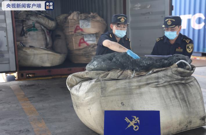 """大连海关查获""""洋垃圾""""184.8吨图片"""