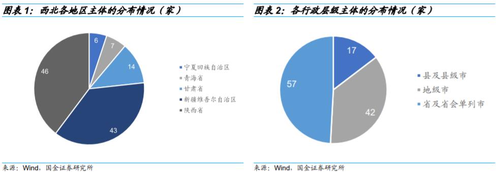 【国金研究】城投非标手册(2020版)——西北篇