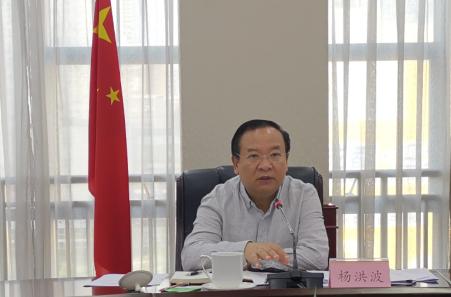 杨洪波副省长主持召开分管领域经济运行调度工作会图片