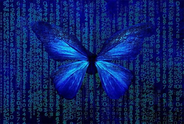 在奇异的量子世界里,连蝴蝶效应都不存在