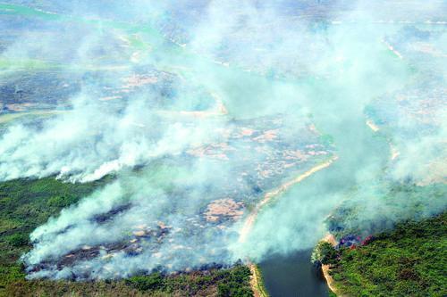 ▲这是8月28日在巴西潘塔纳尔湿地拍摄的火情。|新华社发 (下同)