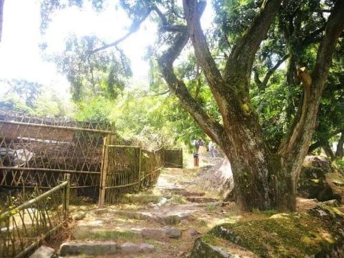 """嵊州市白雁坑村建成""""地质文化村"""",从此走上一条美丽致富路!"""