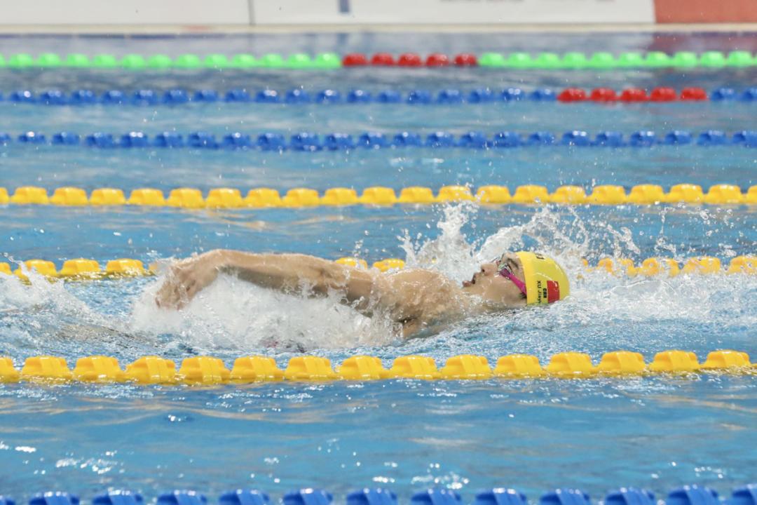 喝彩,为2020全国游泳冠军赛中的北体身影图片