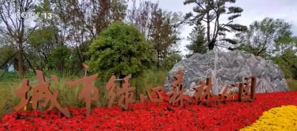 中秋国庆假期明日开启·旅游 城市绿心森林公园开园 免费开放图片
