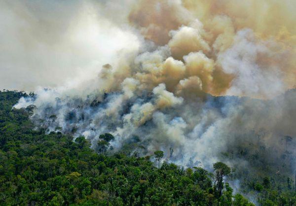 这是8月16日在巴西帕拉州新普罗格雷苏附近拍摄的亚马孙雨林火势。 (新华社/法新)