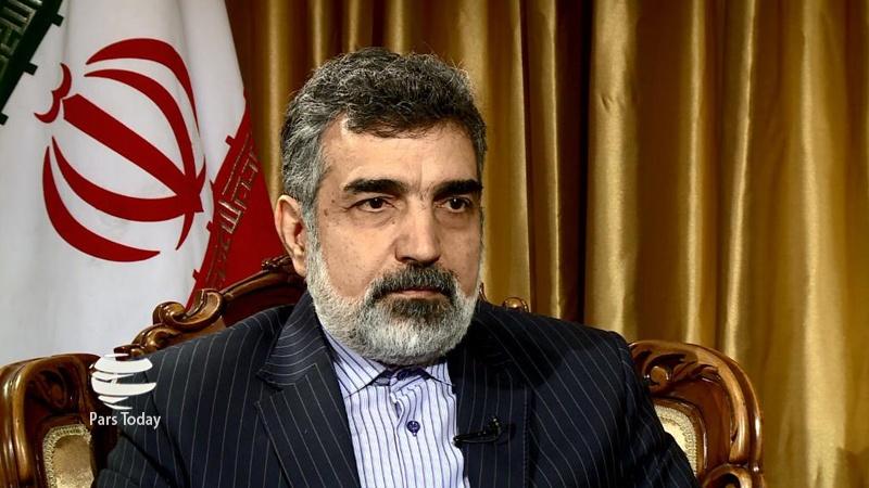 伊朗原子能组织发言人:纳坦兹核设施事件是蓄意破坏