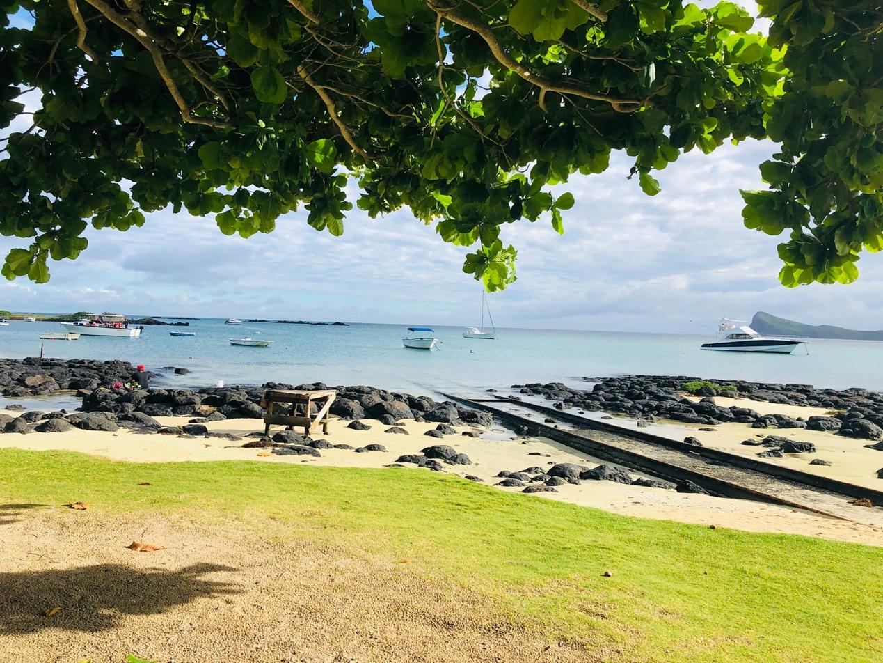 岛国毛里求斯如何成功遏制新冠病毒传播?