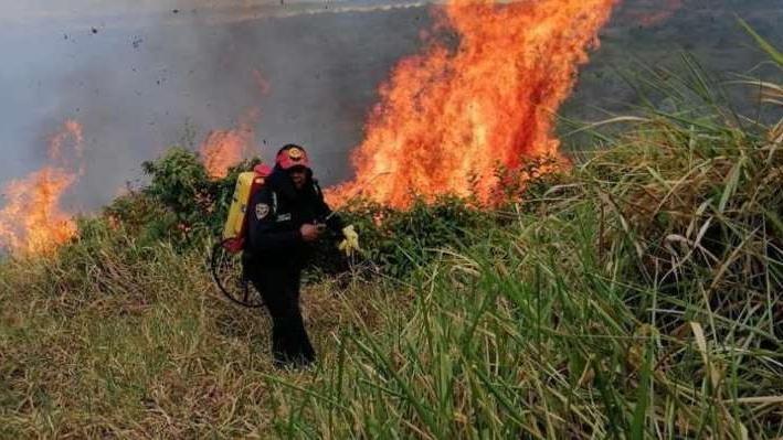 哥伦比亚山火过火面积逾千公顷 政府发布红色警报