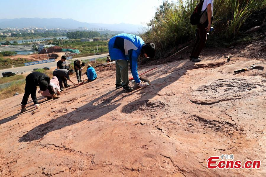This photo taken on Nov. 10, 2020 shows the archaeological site in Shanghang County, east China's Fujian Province. (Photo: Shanghang County, Fujian Province)