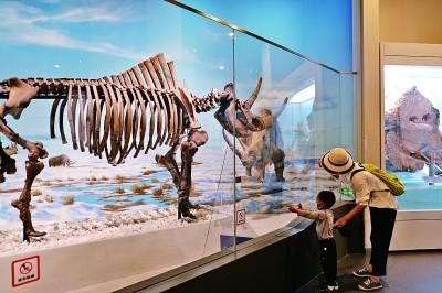 家长带领孩子在北京自然博物馆内参观。本报记者王美莹摄/光明图片