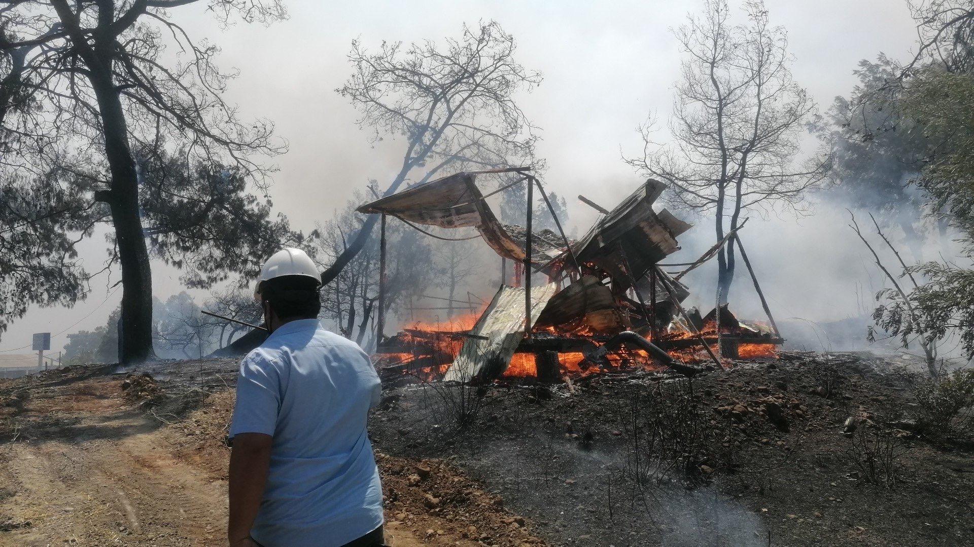 土耳其安塔利亚森林大火仍在持续 62人接受治疗