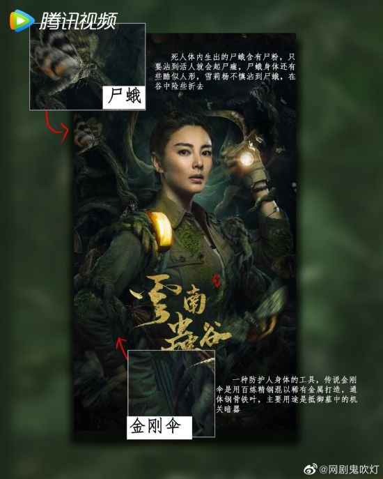 《云南虫谷》全集百度云网盘(HD1080p)高清国语
