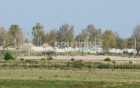 乌兹别克斯坦安置约800名阿富汗难民和政府军士兵