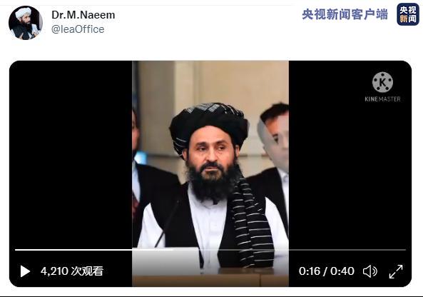 """阿富汗塔利班否认巴拉达尔""""死于内讧"""""""