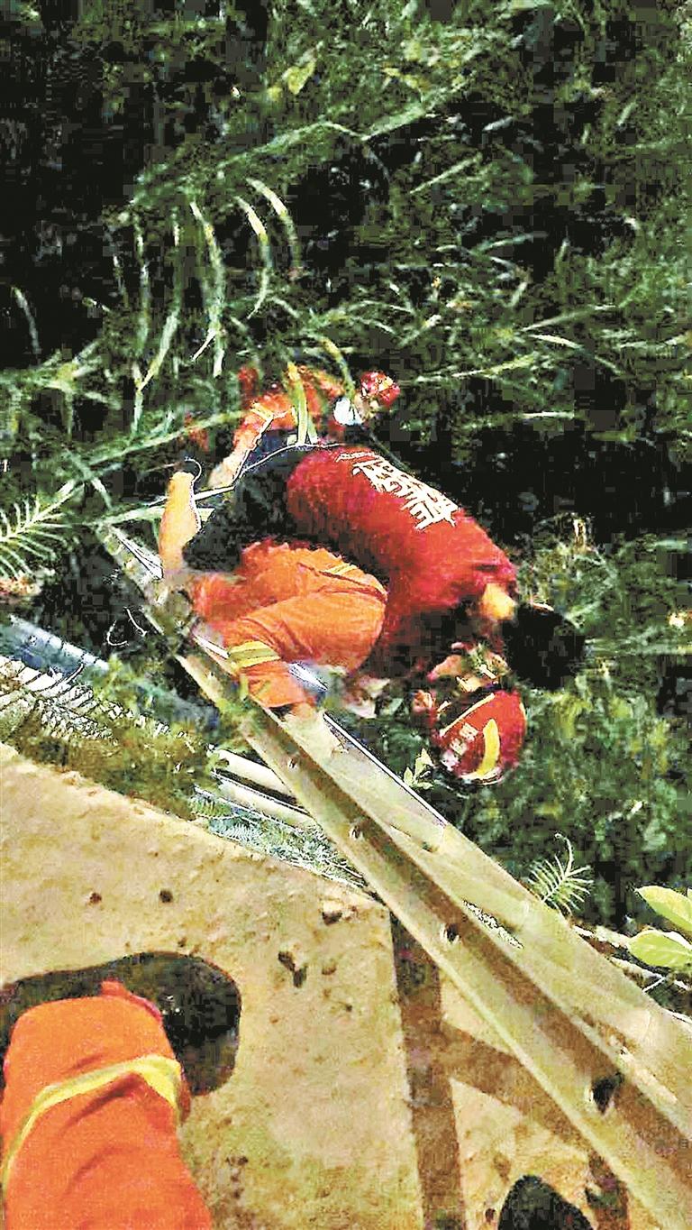 ▲消防员背着男子爬梯。深圳晚报记者 周江南 通讯员 何健豪 摄