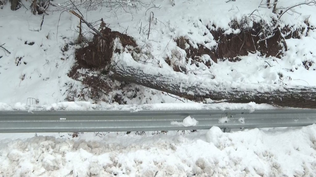 保加利亚西北部出现暴雪天气 部分道路封闭