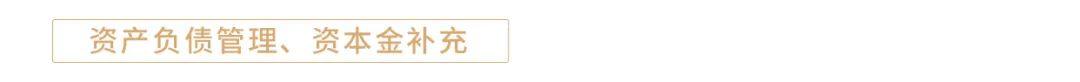 【今日推荐】司库策略谈第181期:2020年商业银行资本补充回顾与展望