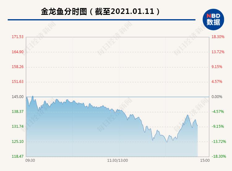 7000亿大白马金龙鱼暴跌近14%:市值蒸发1100多亿 发生了什么?