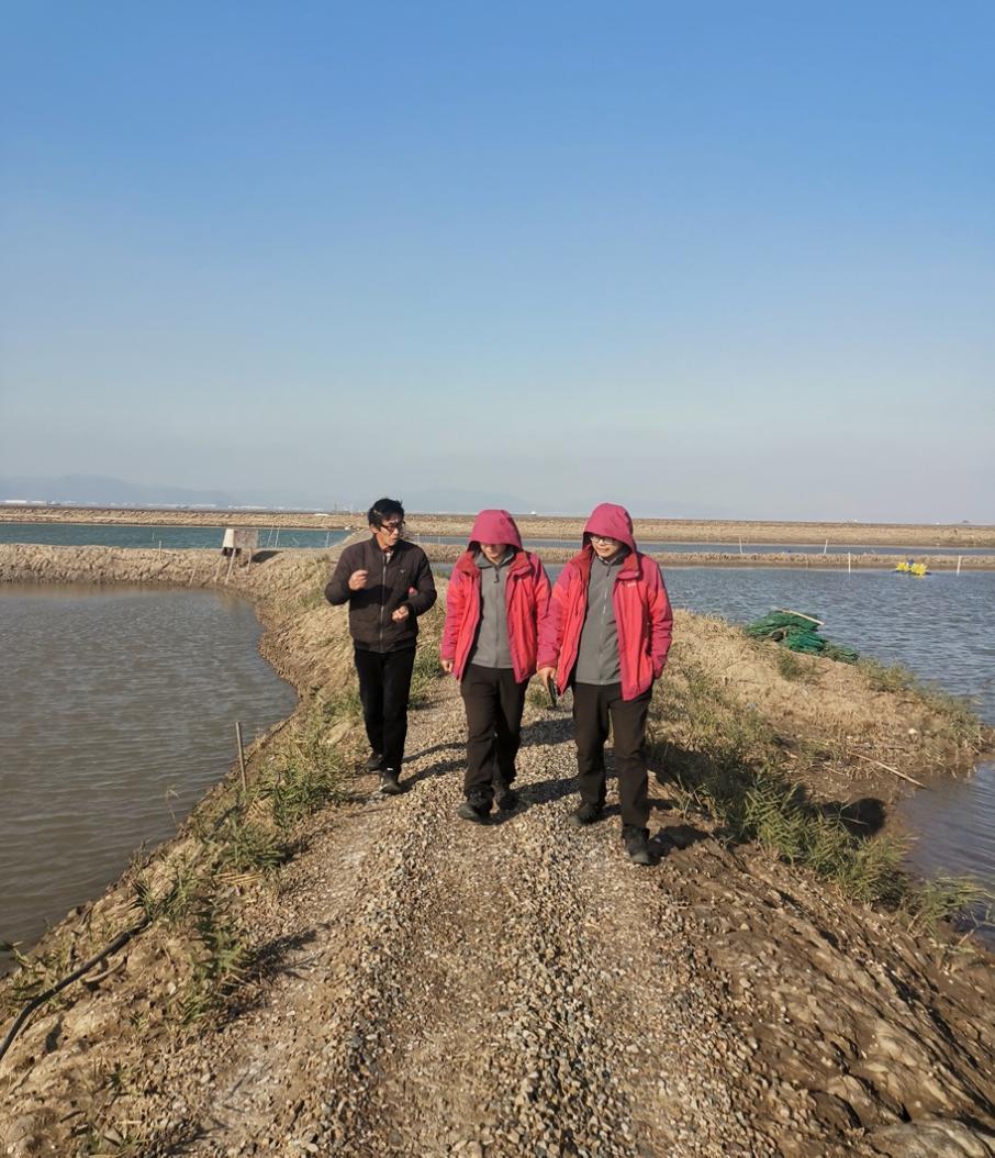 自然资源部东海局在浙江指导检查养殖用海调查工作图片