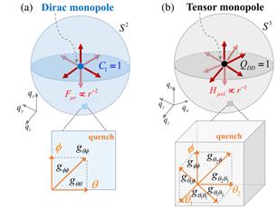 华南师大量子计算领域重要进展:首次实现和观测到四维参量空间中的张量磁单极