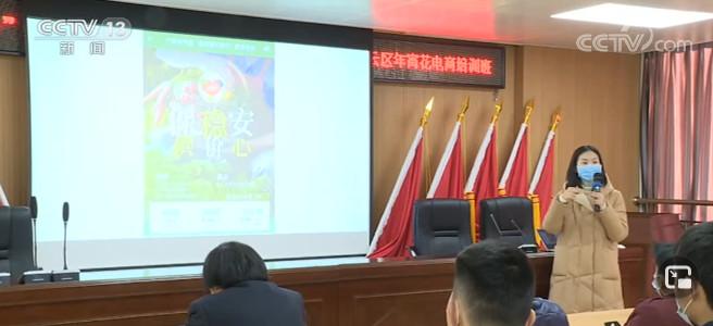 广东:网上花市接力 着重解决供需两端对接图片
