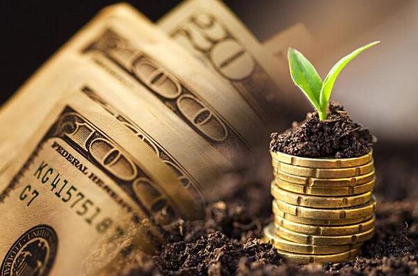 三大庞氏资产:抱团股、特斯拉、比特币,本周正式开始暴跌