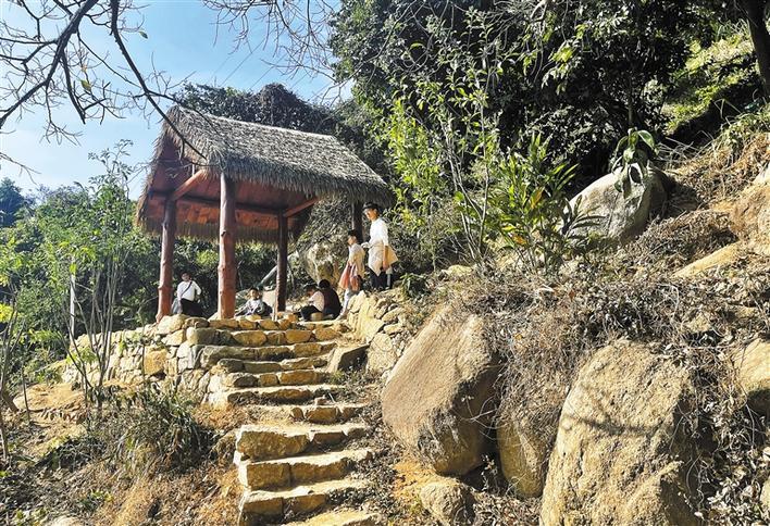 户外爱好者徒步穿越中部郊野径。深圳商报记者 廖万育 摄