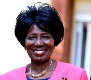 赞比亚副总统呼吁该国民众团结抗疫