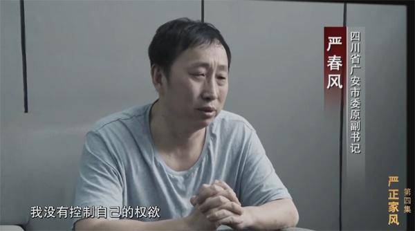 """专题片评论   着急忙慌灭舆情,严书记""""灭火""""灭错了方向"""