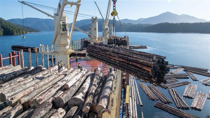 大自然家居(02083.HK)950万人民币收购木材配件业务