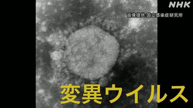 日本暴发首起变异病毒集体感染 患者出自同一公司