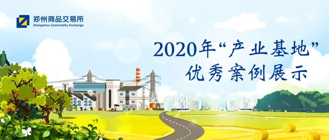 """2020年""""产业基地""""优秀案例展示之一:中纺棉国际贸易有限公司"""