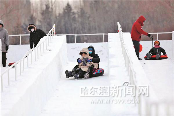 哈尔滨市最大公益冰场开放 位于群力体育公园内图片