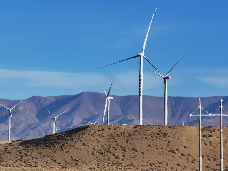 国家能源集团2020年新增新能源装机521万千瓦图片