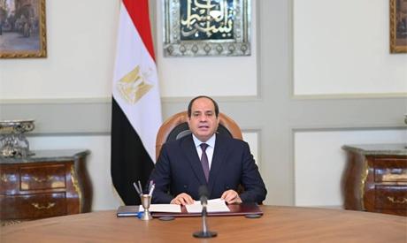 埃及总统塞西:非洲国家应加强司法合作 共同应对挑战