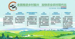中央一号文件:加快农业农村现代化
