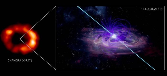 科学家发现了一颗中子星可能潜伏在一颗著名的超新星内