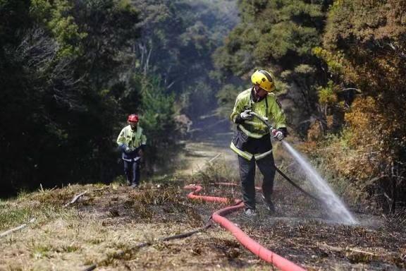 新西兰奥克兰附近发生丛林火灾