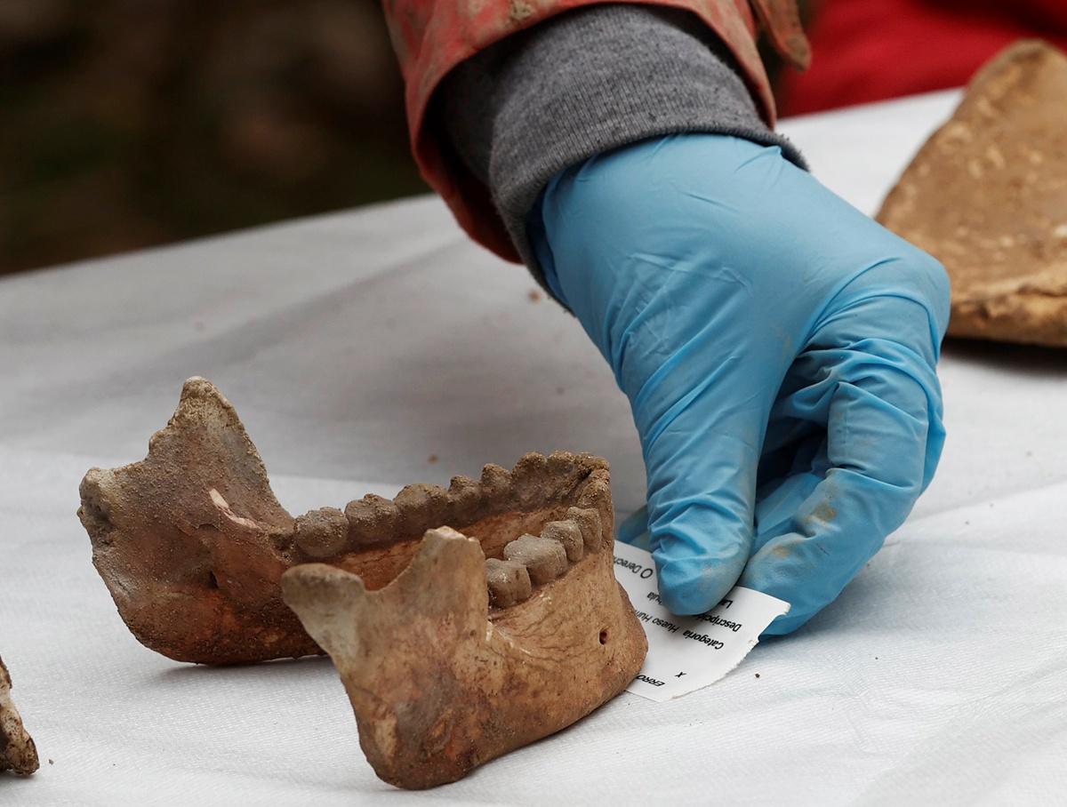 西班牙北部发现史前人类骨骼:距今已有11700多年