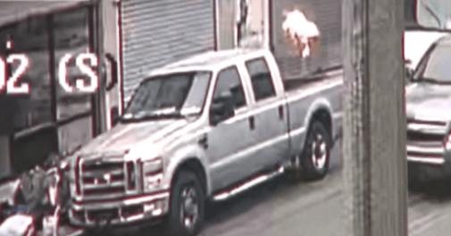 美国蒙面男子向托儿所投燃烧弹 扔完上车就跑(图)