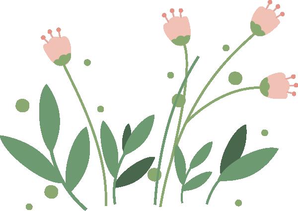 倾听 | 今日春分,千花百卉争明艳图片