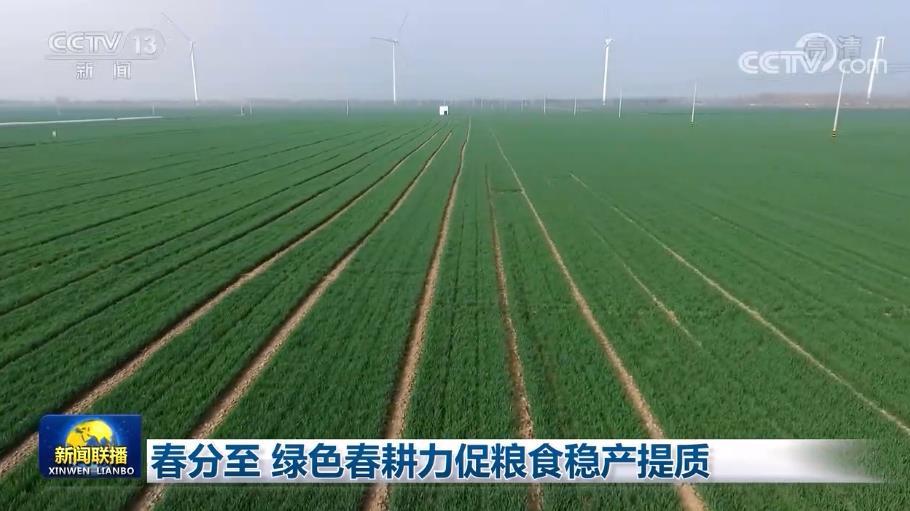 春分至 绿色春耕力促粮食稳产提质图片
