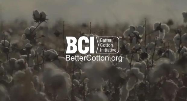 """""""盯""""上新疆棉花?BCI哪儿来的勇气图片"""