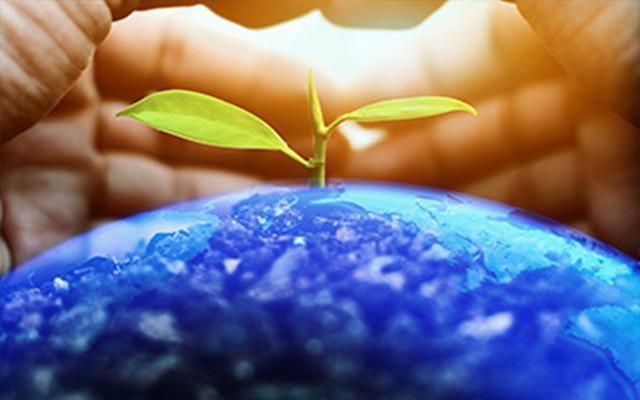 排放权交易管理暂行条例草案公开征求意见 全国碳市场启动渐行渐近