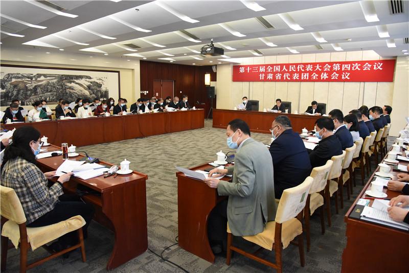 十三届全国人大四次会议甘肃代表团举行全体会议图片