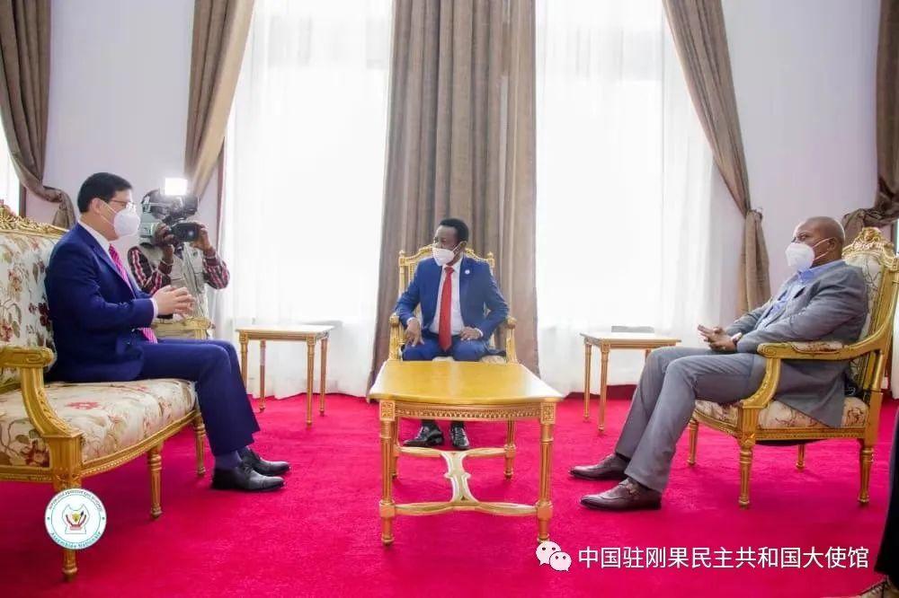 驻刚果(金)大使向刚国民议会新任议长转交栗战书委员长贺电图片